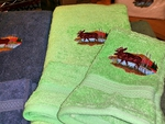 EM10333.SPG.LMW - 3pc 100%  Rayon from Bamboo Towel Set -  Spring Green - Scenic Moose EM10333.SPG.LMW