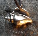 Conch Shell 05-ConchShell