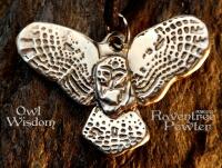 Owl Wisdom Nature-31