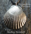 Scallop Seashell - Large 071-ScallopSeashellLarge