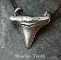 Sharks Tooth - [style B] 05-SharksToothB