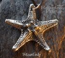 Starfish - Large 055-StarfishLarge