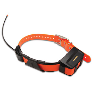 Garmin TT 10 Tracking/Training Collar