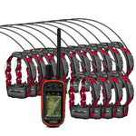 Fourteen Dog Garmin Alpha 100 Bundle   Garmin-Alpha-Bundle-14