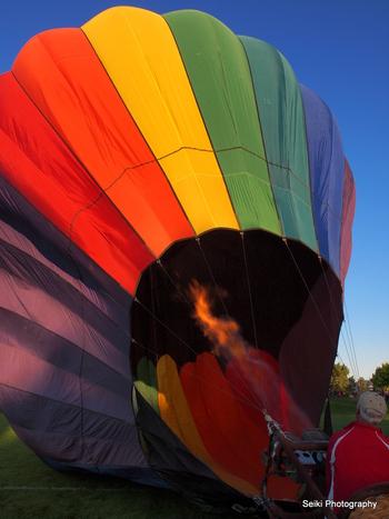 Balloon Festival -1 #02-P8092322