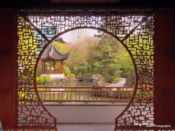 Chinese Garden -2 #09-1-1-P4031381