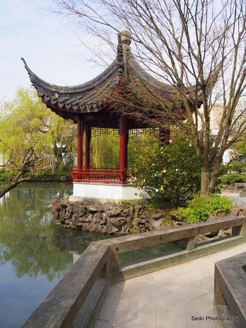Chinese Garden -3 #10-P4031373