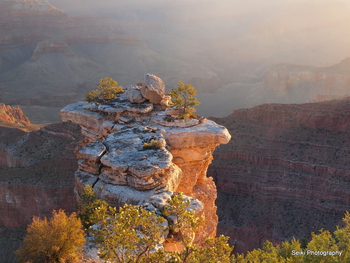 Grand Canyon Morning #12-PA033121