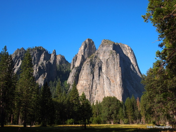 Yosemite -3 #14-D2177678