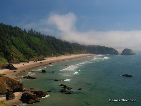 Oregon Coast - 5 P8165161