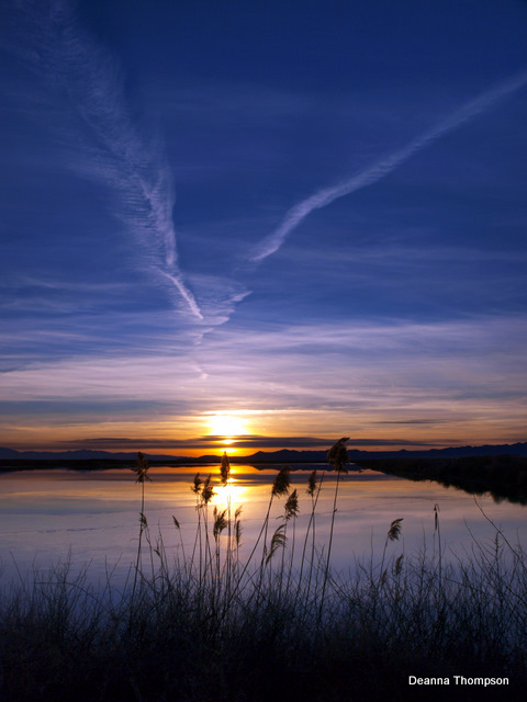 Farmington Bay Sunset 2 #P2116810