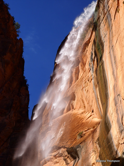 Weeping Rock Falls in Zion #3142129