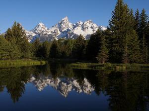 From Schwabacher's Landing - Grand Teton NP #6273796