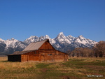 Mormon Row Barn -  2Grand Teton NP 18-P5137823