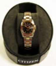 Sinclair Ladies Citizen Watch LADIESCITIZEN