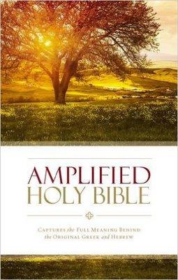 AMPLIFED BIBLE #B-I9