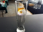 GP820.JTRT - Jumping Rainbow Trout Pilsner Glass (Set of 4) GP820.JTRT