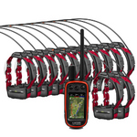 Twelve Dog Garmin Alpha 100 Bundle   Garmin-Alpha-Bundle-12