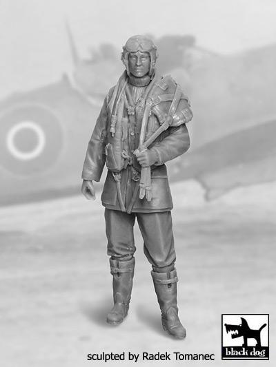 RAF Fighter pilot 1940-45 N-1 #BDF32028