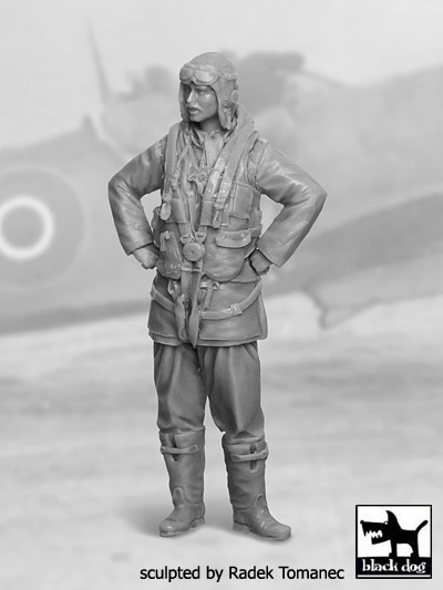RAF Fighter pilot 1940-45 N-2 #BDF32029