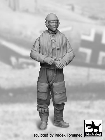Luftwaffe pilot 1940-45 N-2 #BDF32032