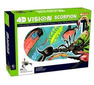 4D VISION KITS   N/A Visible 4D Scorpion Anatomy Kit (12&quot;) (D)<!-- _Disc_ --> FDV26113
