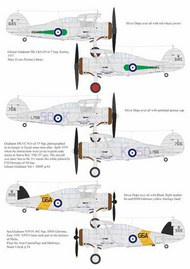 Aims  1/32 Gloster Gladiator Mk.I K6145 of 3 Sqn, Kenley,1937 AIMS32D019