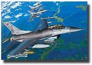 Academy  1/32 F-16CG/CJ Block 40/50 Fighting Falcon ACY12101