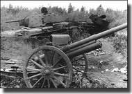 Ace Plastic Models  1/72 Soviet 76.2mm Mod. 1902/1930 Field Gun w/Limber AMO72252