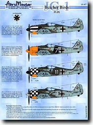 Aeromaster Products  1/48 Collection - Butcher Birds Pt.IX (JG.1) AES48467