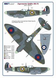 Czechoslovak pilots of No.65 Squadron RAF #AMLC8038