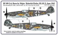 AML Czech Republic  1/48 Messerschmitt Bf.109G-6 Ehrler camouflage pattern paint mask AMLM49007