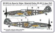 AML Czech Republic  1/72 Messerschmitt Bf.109G-6 Ehrler camouflage pattern paint mask AMLM73003