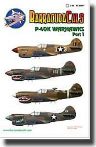 P-40K Warhawk Part 1 #BARBC48007