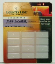 CANDLE MAKING SUPPLIES   N/A Concentrated Scent Square Lily of the Valley 1/2oz. (Blister Cd) (D)<!-- _Disc_ --> CND70714