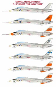 F-14A Tomcat 'The Early Years' #CD48168