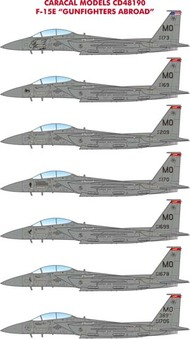 Caracal Models  1/48 McDonnell F-15E Eagle 'Gunfighters Abroad' - Pre-Order Item CD48190