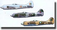 Czech Master Resin  1/72 Collection - Hawker Tempest MK.II CR0111