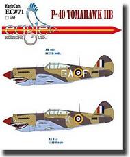 EagleCal Decals  1/32 P-40 Tomahawk IIB EL32071