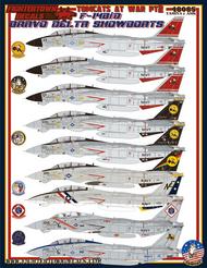 Grumman Tomcats F-14B/D At War Part 2 #FT48085