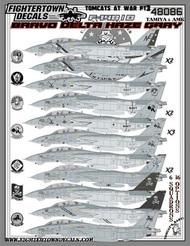 Grumman Tomcats F-14B/D At War Part 3 #FT48086