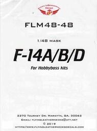 F-14A F-14B F-14D Tomcat Canopy and Wheel Mask Set (HBS kit) #ORDFLM48048