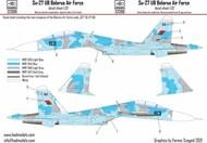 Sukhoi Su-27UB Belarus #HUN32088
