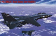 F-14A Tomcat Black Bunny Low Visibility Fighter (Ltd Edition)* #HSG2377