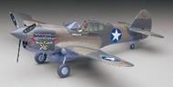 P-40E Texas Longhorn US Fighter #HSG8879