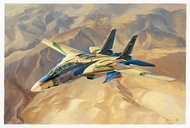 Grumman F-14A Tomcat Tomcat IRIAF (Iranian AF) #HBB81771