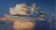 F/A-18E Super Hornet Fighter #ITA2791