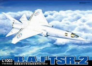 Lion Roar  1/144 TSR-2 RAF Strike/Recon Aircraft (Plastic Kit)- Net Pricing LNR1003