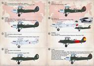 Polikarpov R-51. R-5T. Torpedo-bomber, Moscow, Spring, 1934. #PSL72362