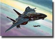 F-14 Tomcat 'Black Tomcat' #RVL4029